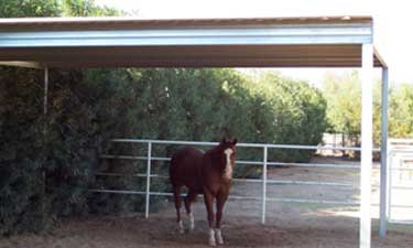 Single Slope Carport Used as Livestock Shelter